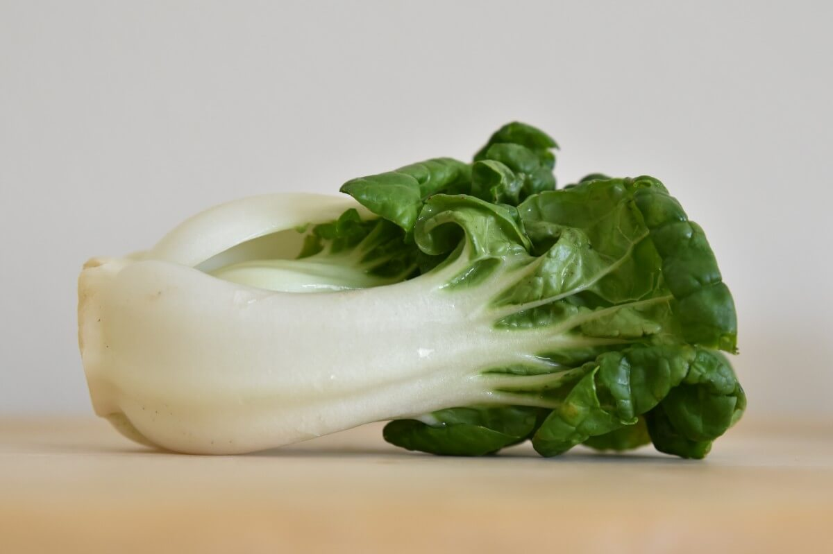 Bok Choy as Substitute to Celery