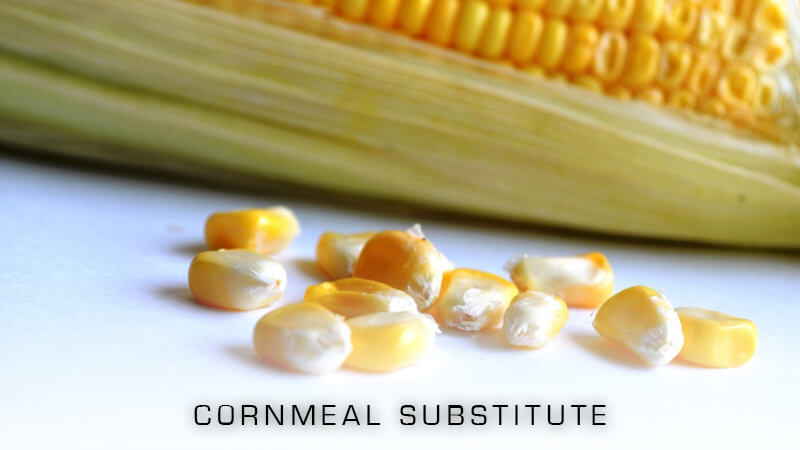 Cornmeal Substitutes to Try