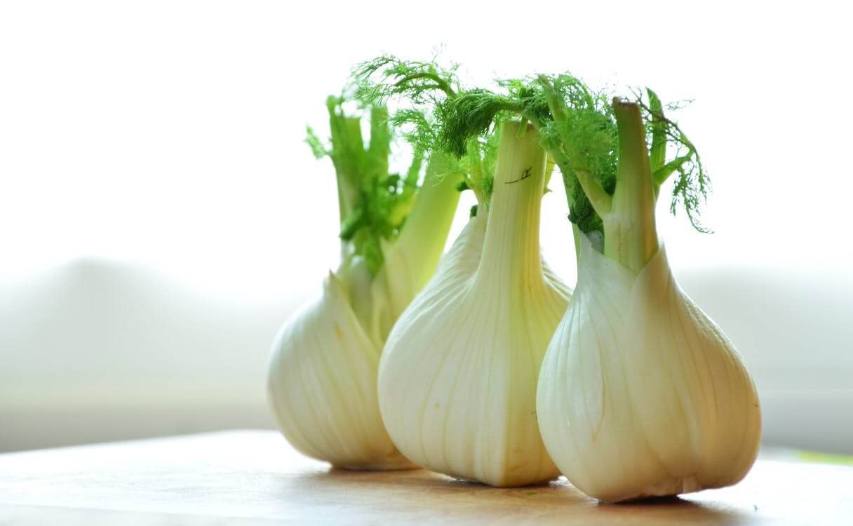 Fennel as Substitute to Celery
