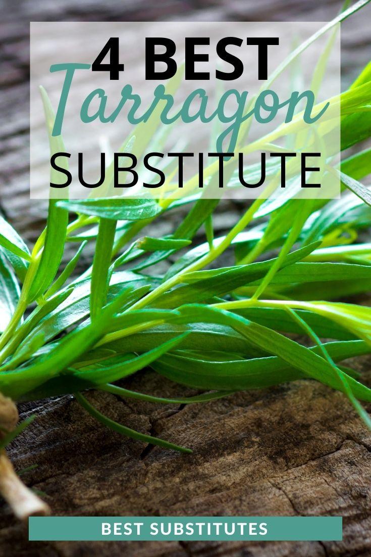 best tarragon substitutes