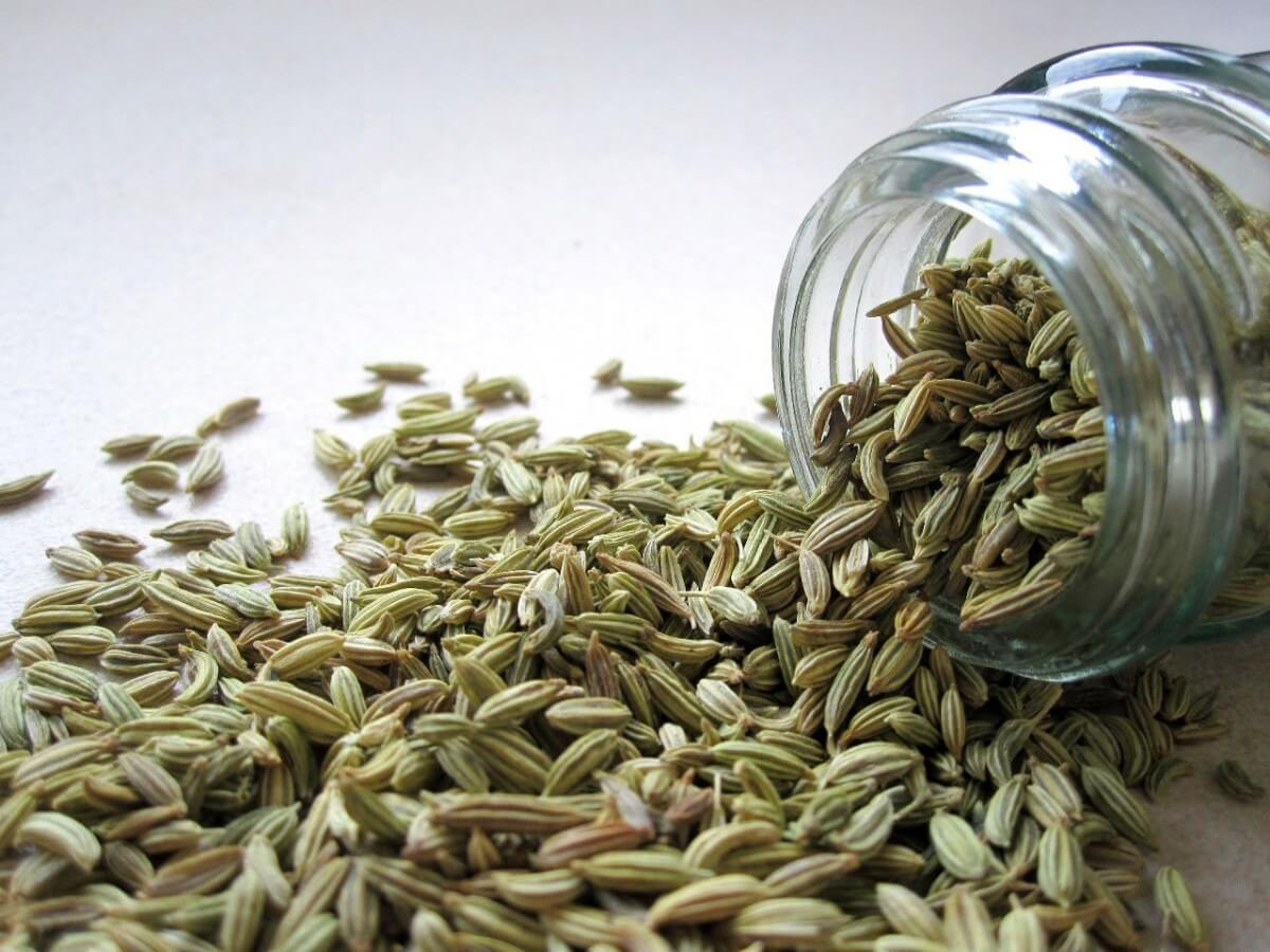 Caraway Seeds as Substitute to Rosemary