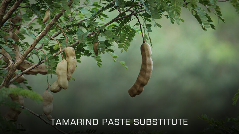 Tamarind Paste Substitutes