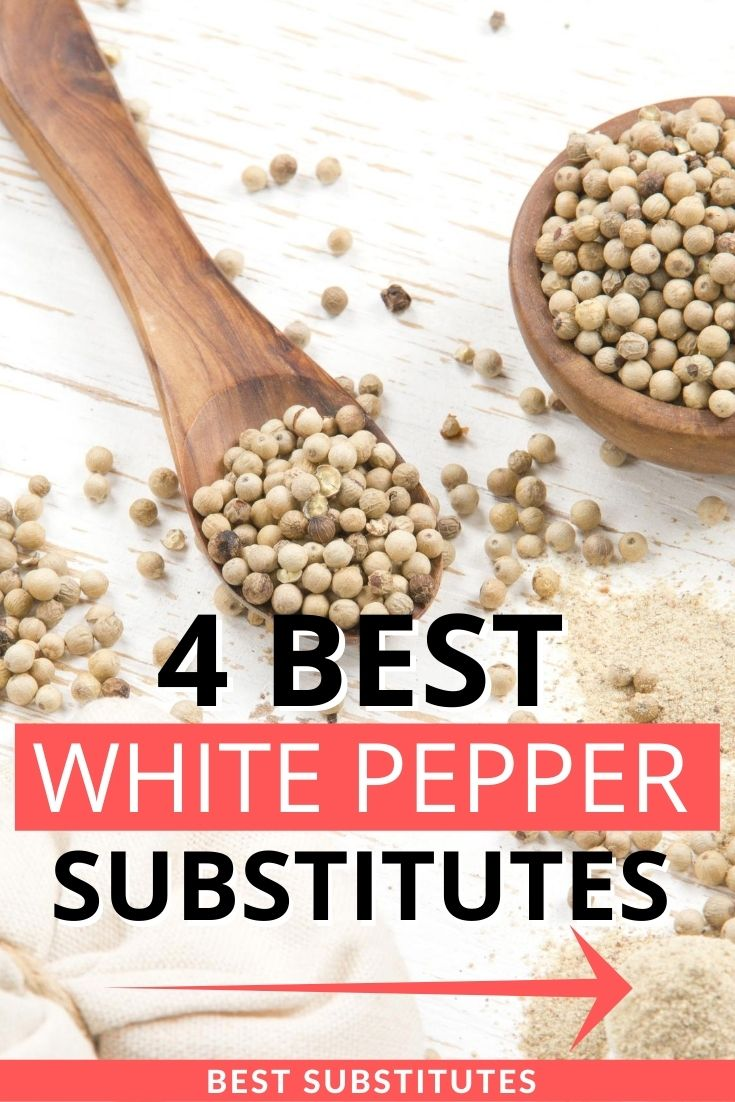 Top 4 Best White Pepper Substitutes For Home Cooking Recipe Marker