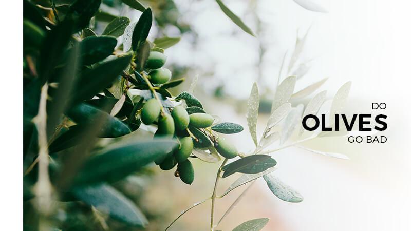 do Olives go bad?