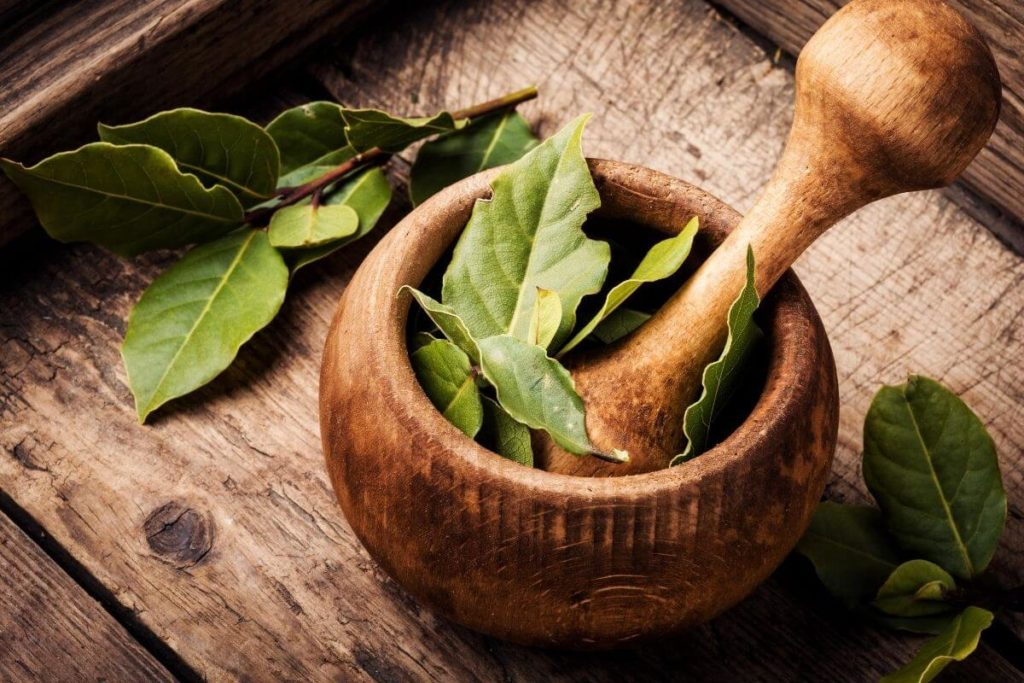 Bay Leaf Foods That Start with B