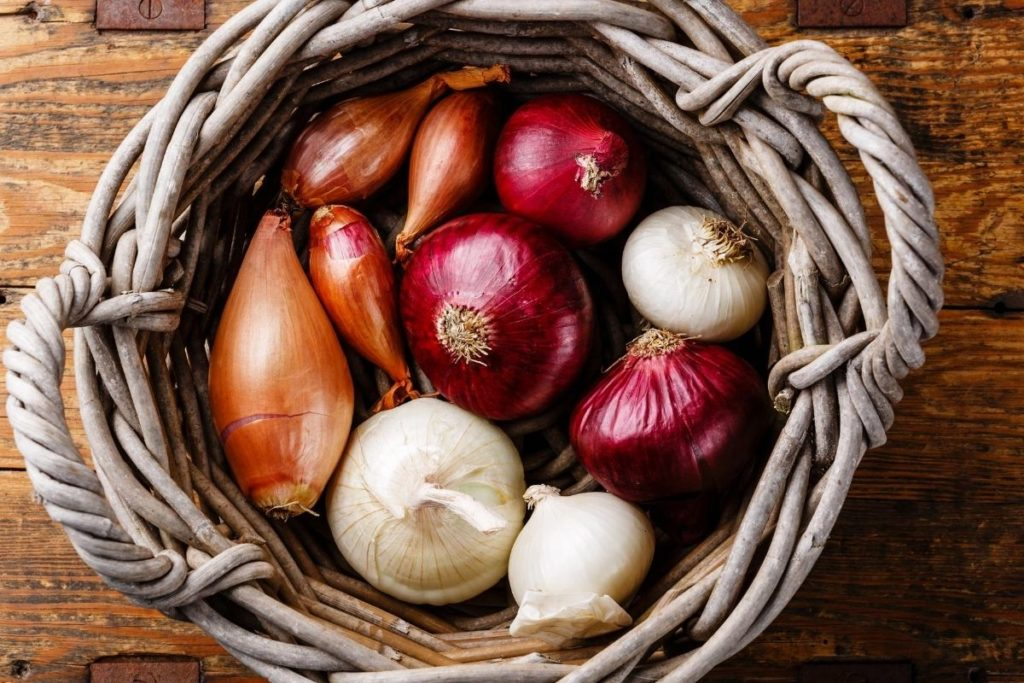 Substitutes for Shallots