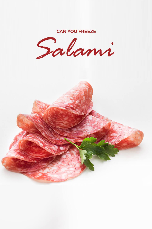 Can you freeze salami meat