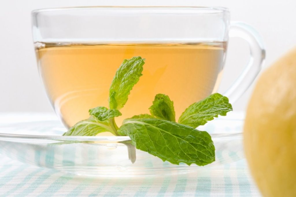 Fresh Spearmint Tea Recipe