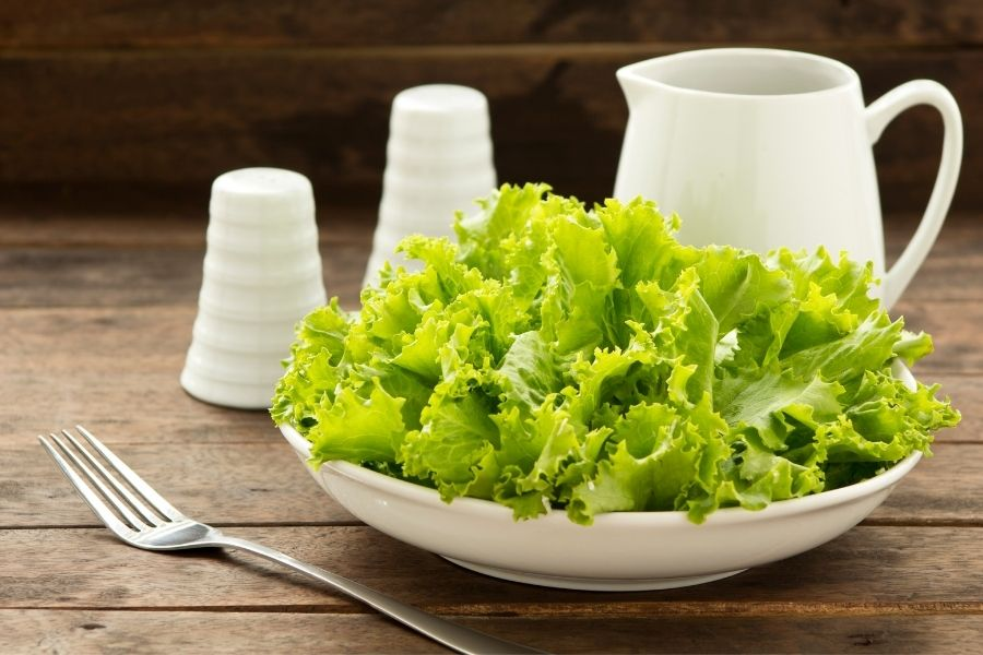 Lettuce - Side Dishes for Ceviche