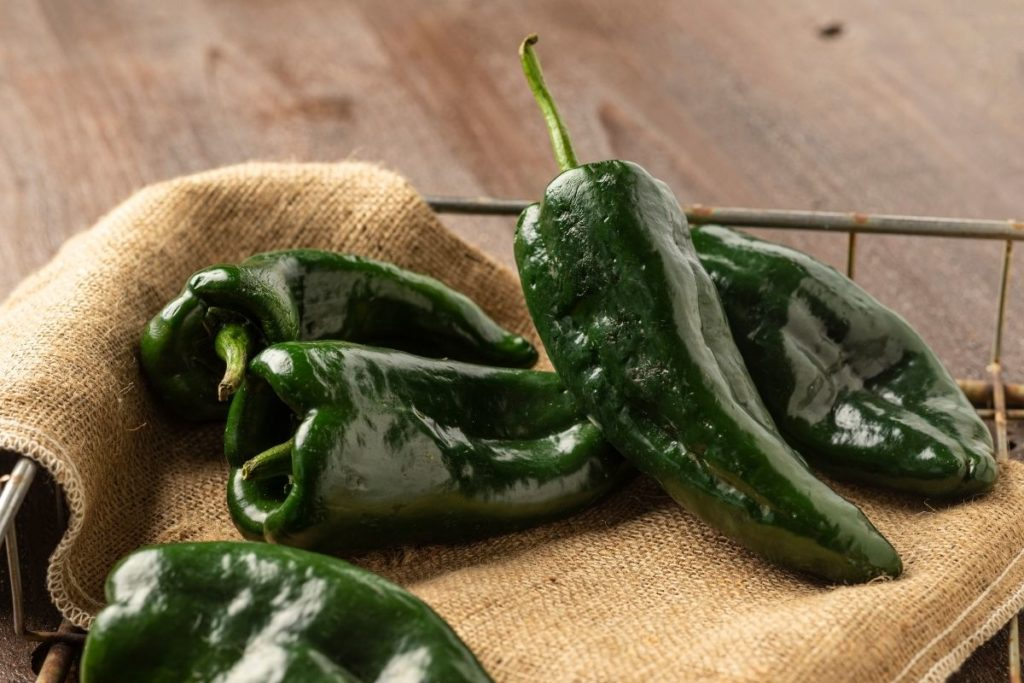 Poblano Peppers - Substitutes for Green Pepper