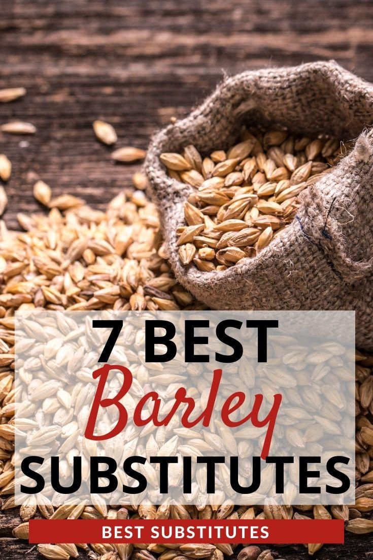 Best Barley Substitutes