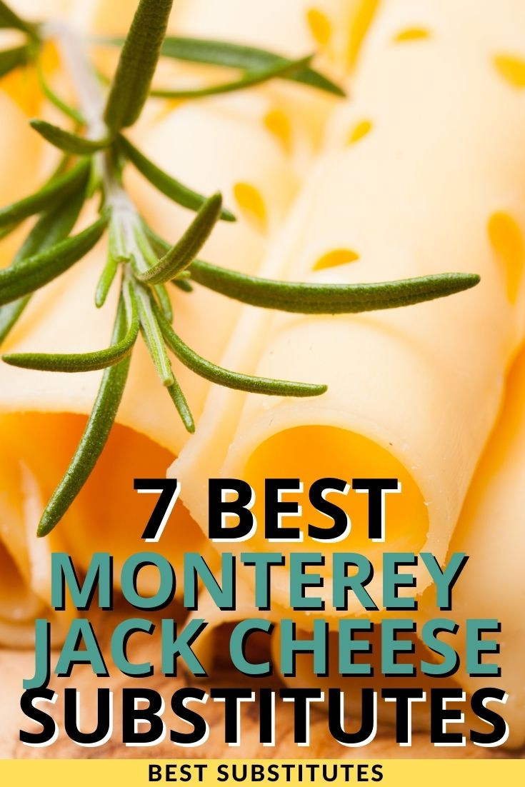 Monterey Jack Cheese Substitutes