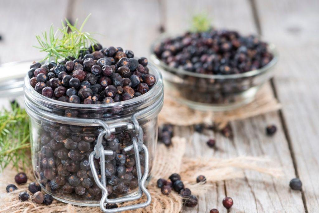 What is Juniper Berries