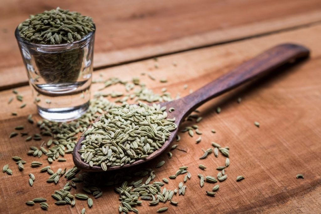 Fennel Seeds - Substitute For Caraway Seeds