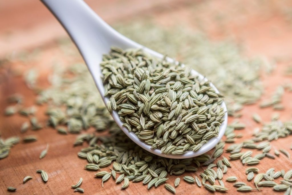 Fennel Seeds and Anise Seeds