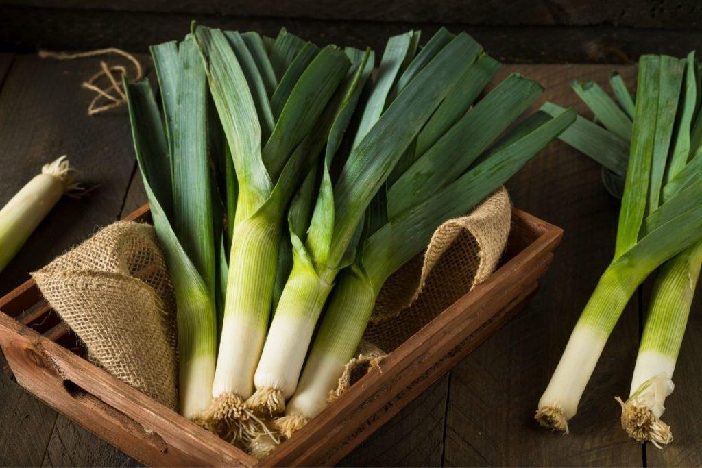 Leeks - Green Onion Substitutes