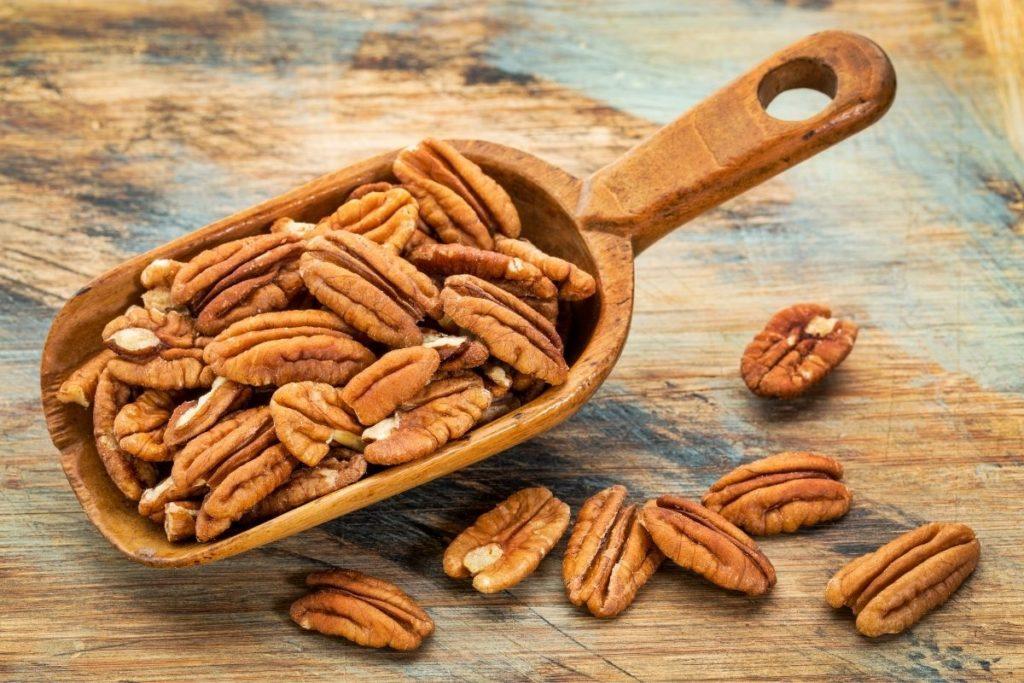 Pecan Nuts -Pine Nut Substitute