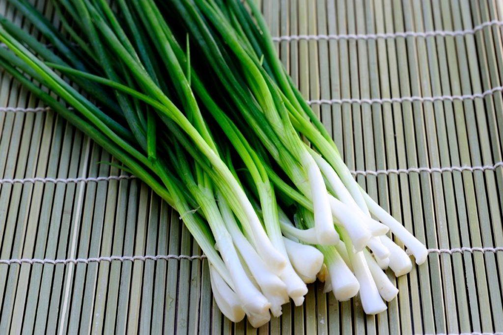 Spring Onions - Leek Substitute